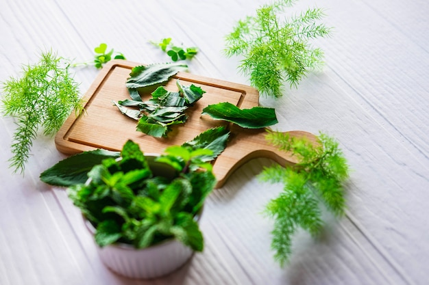 Herbs culantro and mint herbs on a wooden cutting board Premium Photo