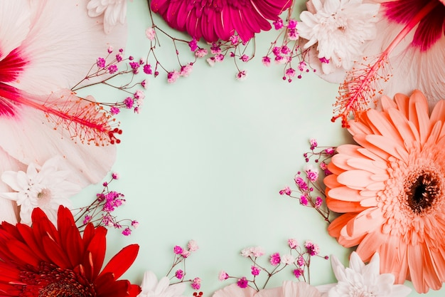 Hibiscus; gerbera and baby's-breath flowers decoration with space for text in the center Free Photo