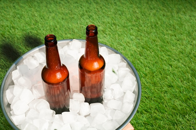 High angle beer bottles in tray with ice Free Photo