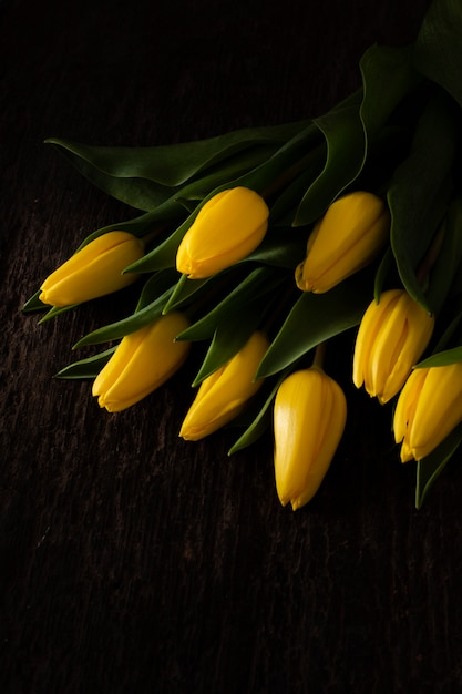 High angle blooming yellow tulips Free Photo
