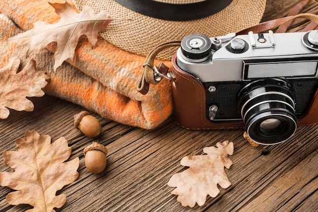 紅葉とドングリのカメラの高角度 無料写真