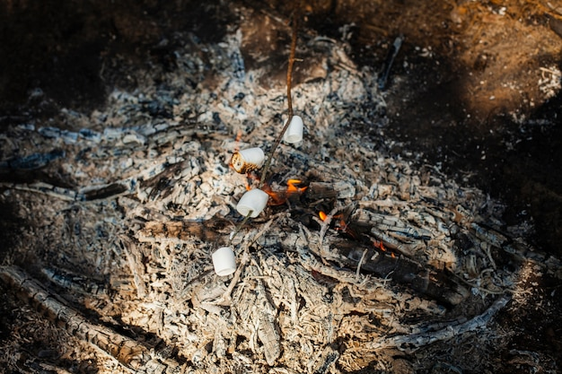 High angle fire cooking marshmellows Free Photo