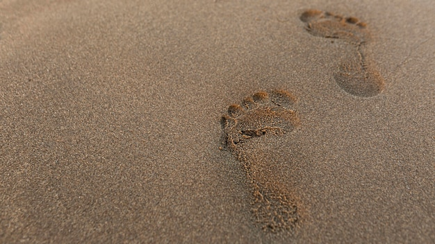 High angle of footprint in the sand at the beach Free Photo