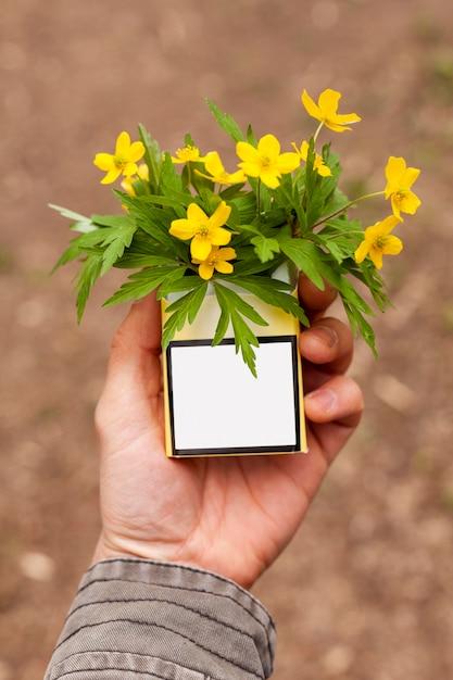 花とタバコのハイアングルパック 無料写真
