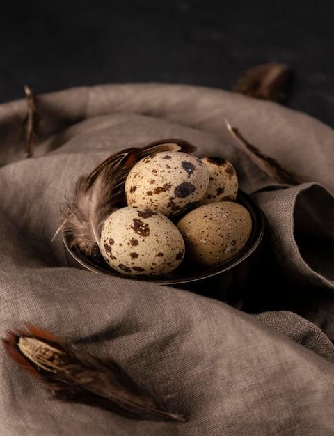 Перепелиные яйца под высоким углом в миске с перьями Бесплатные Фотографии