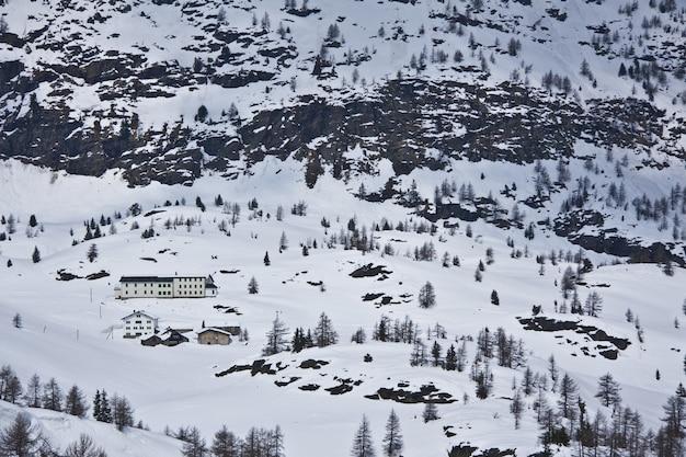 Inquadratura dall'alto di un bellissimo paesaggio con molti alberi coperti di neve Foto Gratuite