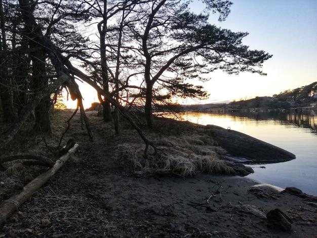 ノルウェー、オストレハルセンの魅惑的な日没時の川のハイアングルショット 無料写真