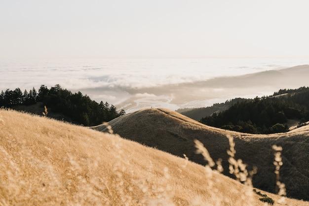 Снимок холмов разных размеров, окружающих спокойный океан, под высоким углом Бесплатные Фотографии
