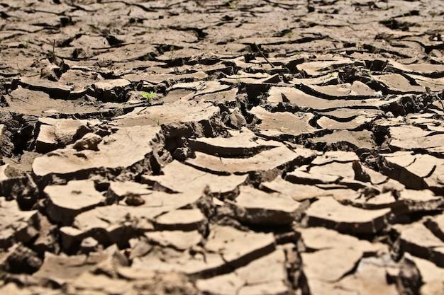 乾燥してひび割れた泥だらけの地面のハイアングルショット 無料写真