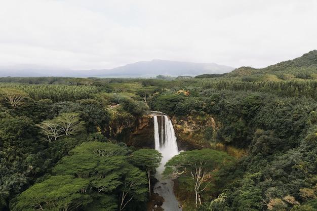 森の中の滝のハイアングルショット 無料写真