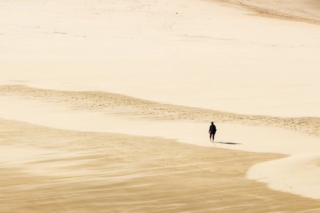 High angle shot of a person walking barefoot on the warm sands of the desert Free Photo