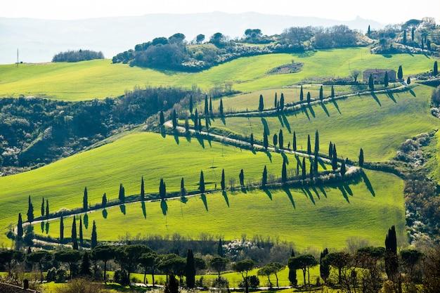 Inquadratura dall'alto di una strada circondata da alberi e splendidi campi ricoperti di erba Foto Gratuite