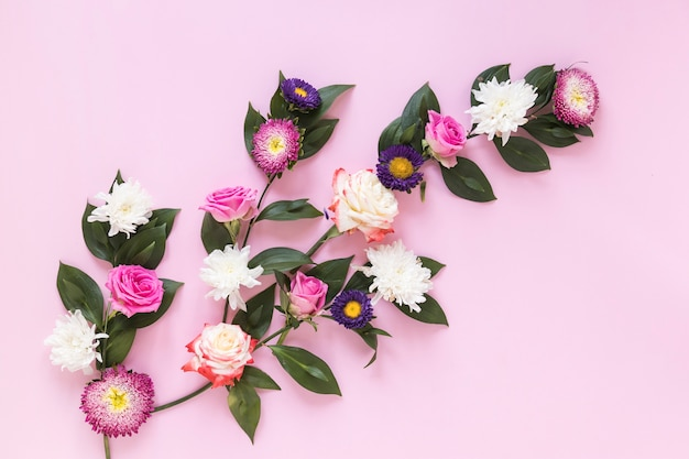 High angle view of fresh flowers on pink background Free Photo