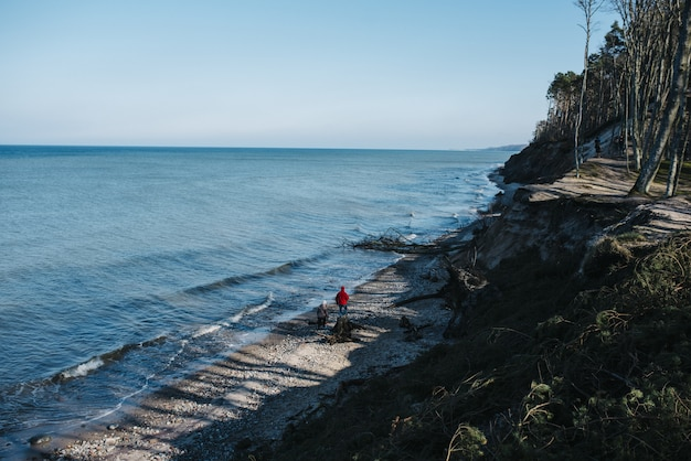 昼間は海に囲まれたビーチを歩く人々のハイアングルビュー 無料写真