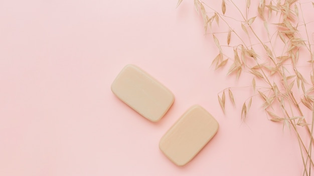 High angle view of soaps and husk on pink backdrop Free Photo