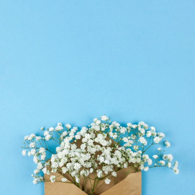 High angle view of white baby's breath flowers with brown envelop against blue background Free Photo