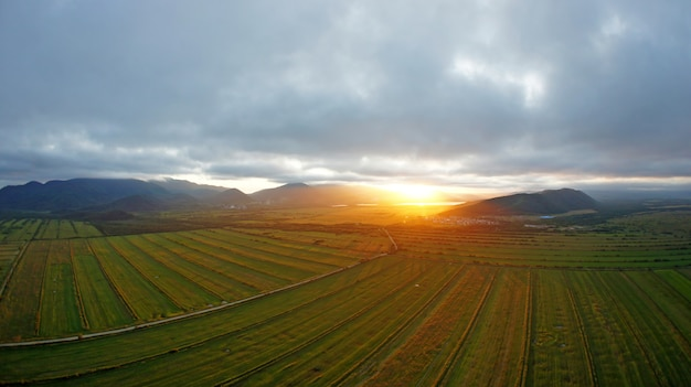 High field and clouds in kamchatka Premium Photo