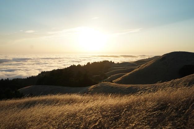 Alte colline coperte di erba secca in una giornata di sole con uno skyline visibile sul monte. tam in marin, california Foto Gratuite