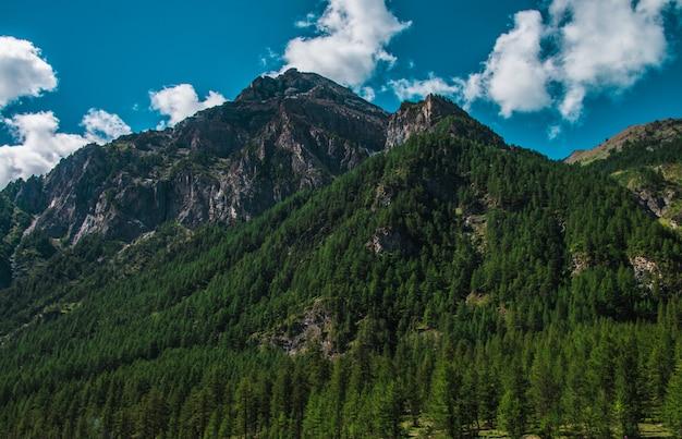 ピラジェラート、イタリアで曇り空の下で緑の木々で覆われた高いロッキー山脈 無料写真