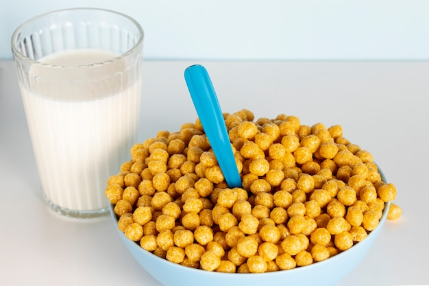High view bowl of morning cereals and milk Free Photo