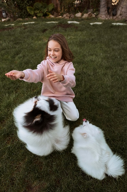 Собаки высокого вида играют с девушкой Бесплатные Фотографии