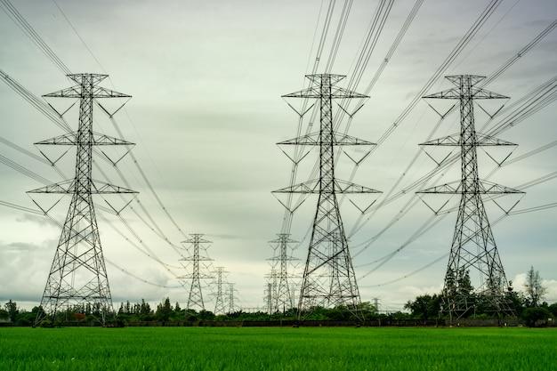 Высоковольтная опора и электрический провод на зеленом рисовом поле и лесном лесу Premium Фотографии