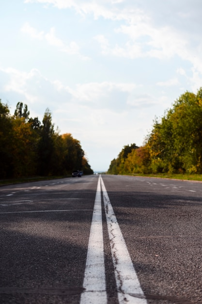 Highway road with beautiful trees Free Photo