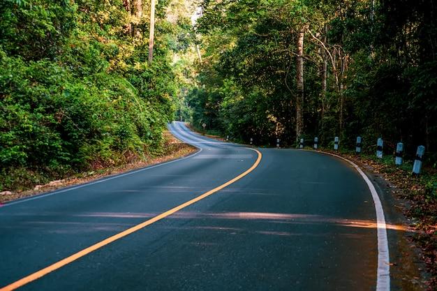 カオヤイ国立公園の緑の木と高速道路の道。 Premium写真
