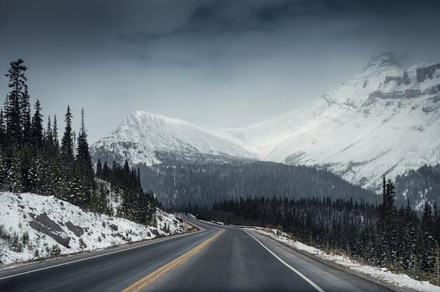 Icefields parkwayで憂鬱な雪山の高速道路 Premium写真