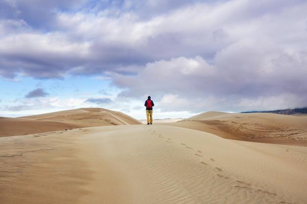 Путешественник среди песчаных дюн в пустыне Premium Фотографии