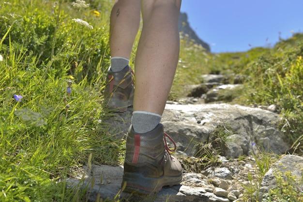 Hiker climbing a path Premium Photo