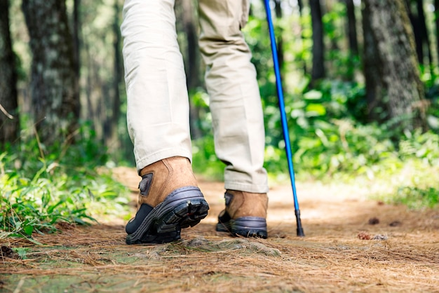 Hiker man with boots and trekking pole walking Premium Photo