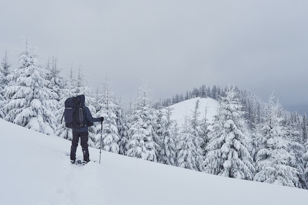 Hiker, with backpack, is climbing on the mountain range, and admires snow-capped peak. epic adventure in the winter wilderness Free Photo