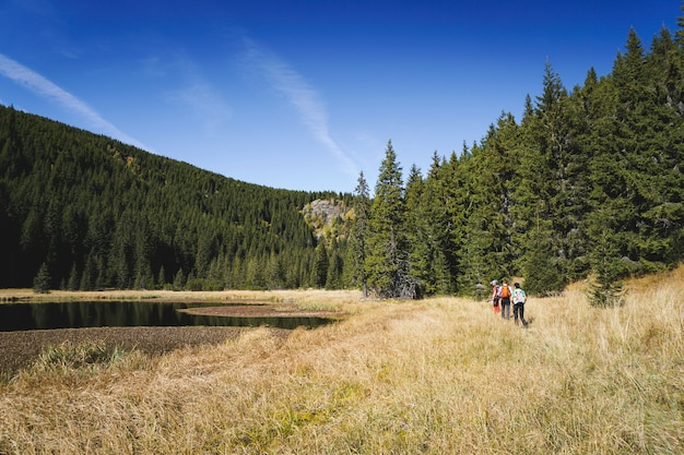 Hikers on a trail along a scenic landscape with mountains, trees and a lake Free Photo