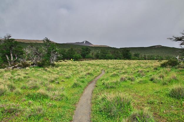 ロスグレーシャー国立公園のハイキング、フィッツロイ、エルチャルテン、パタゴニア、アルゼンチン Premium写真