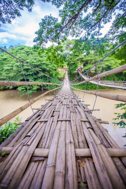 Hinged bridge over the river loboc in bohol, philippines Premium Photo