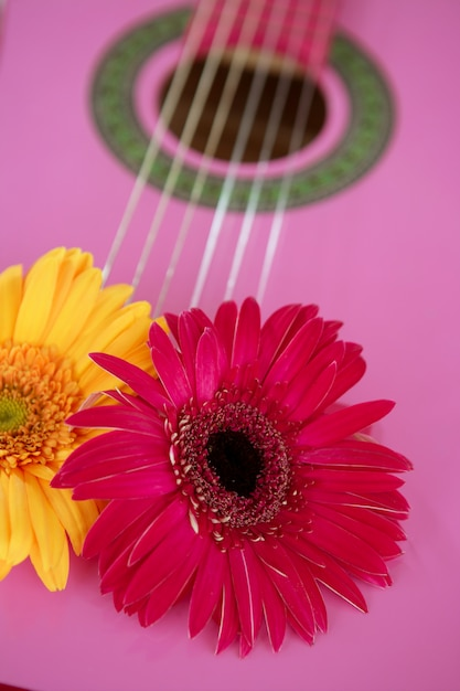 Hippie flower yellow pink gerbera on guitar Premium Photo