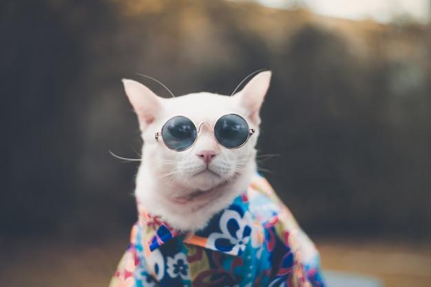 サングラスとシャツを着たhipster white catの肖像 Premium写真