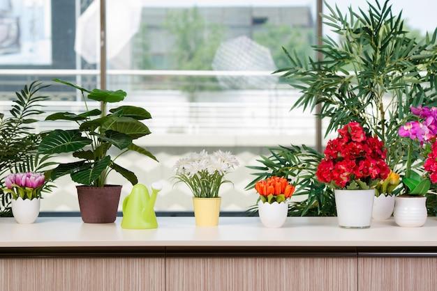 さまざまな花が植木鉢にhmeで配置 Premium写真
