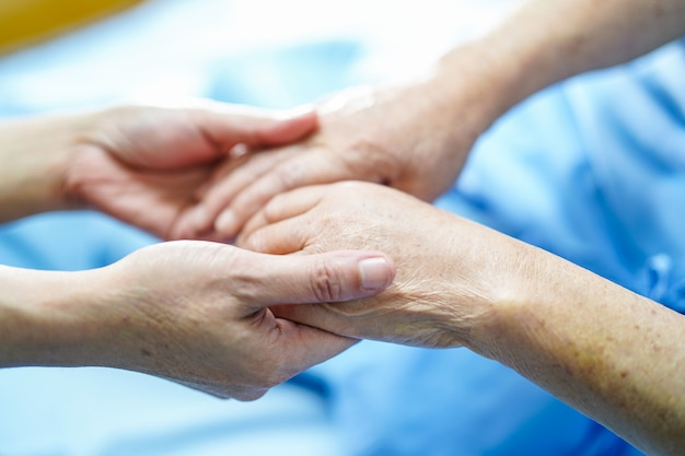 Holding hand asian elderly old lady patient with love, care, encourage and empathy. Premium Photo