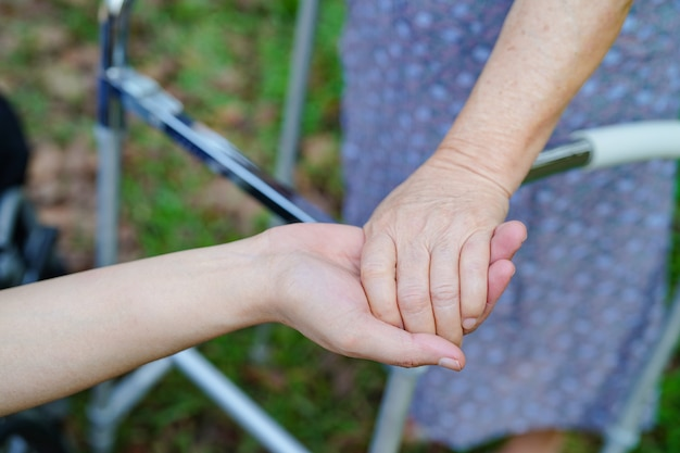 Holding hands asian senior or elderly old lady woman patient with love Premium Photo