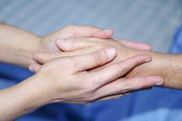 Holding touching hands asian senior or elderly old lady woman patient with love, care. Premium Photo