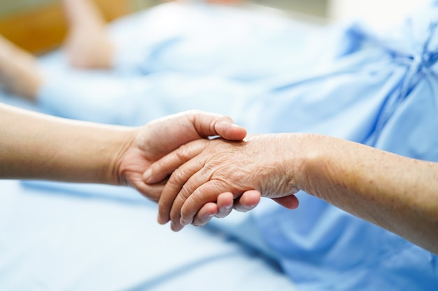 Holding touching hands asian senior or elderly old lady woman patient with love Premium Photo