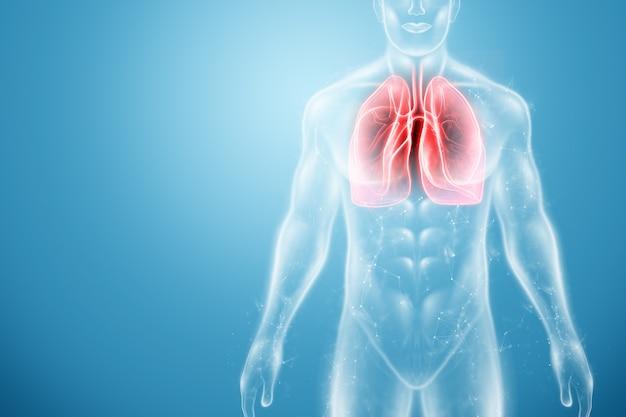 Голограмма воспаленных легких в организме человека Premium Фотографии