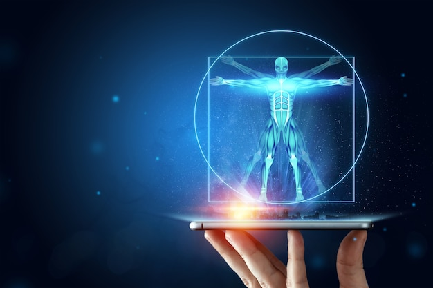 Hologram vitruvian man, the structure of human muscles, biology of the muscular system. human anatomy concept. Premium Photo