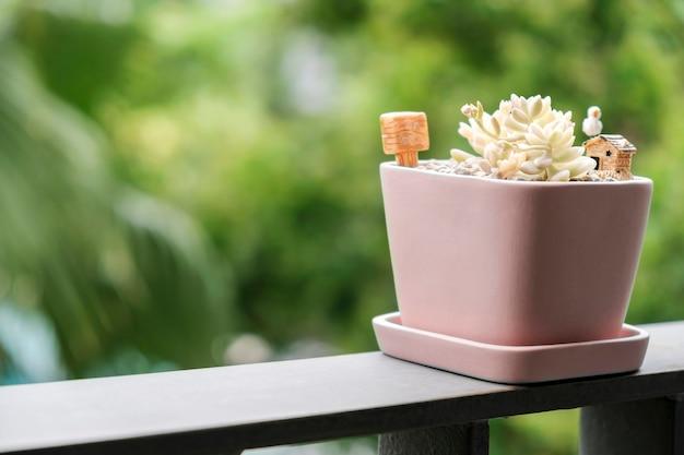 テラスのピンクの植木鉢にある多肉植物の家と庭のコンセプト Premium写真