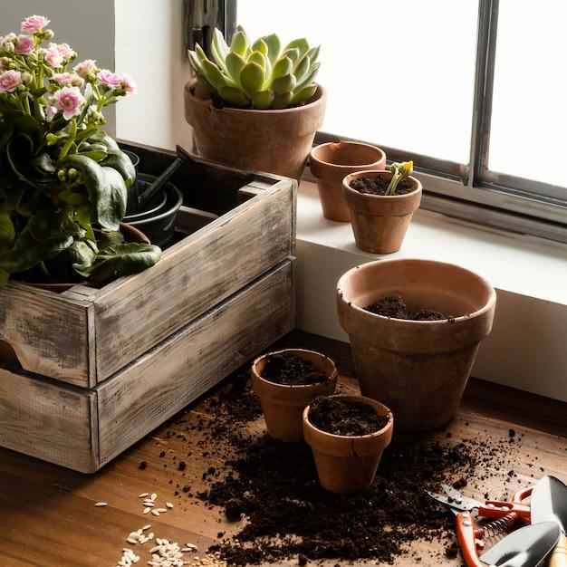 家の園芸の花 無料写真