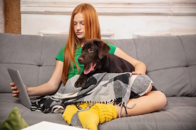 소파에 Puppyon와 포옹, 현대 장치, 가제트를 사용 하 고 재미의 집 초상화. 애완 동물의 사랑, 청소년 문화, 가정의 편안함 및 원격 교육 개념. 무료 사진