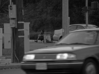 Homeless in america (image 1 of 2) Free Photo