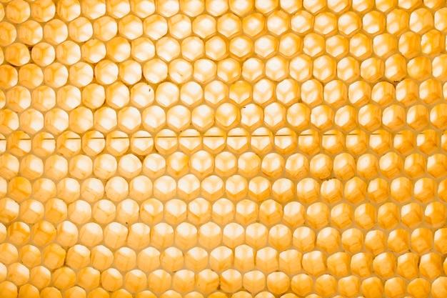Honeycomb Free Photo